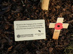 Ceremonial Planting of the WW1 Memorial Tree November 2018